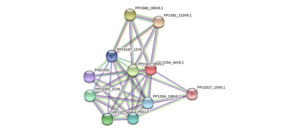 PP1S254_44V6.1 protein (Physcomitrella patens) - STRING interaction network