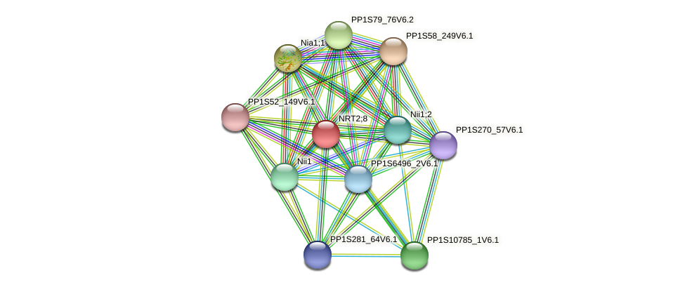 PP1S254_65V6.1 protein (Physcomitrella patens) - STRING interaction network