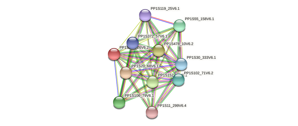 PP1S255_26V6.1 protein (Physcomitrella patens) - STRING interaction network