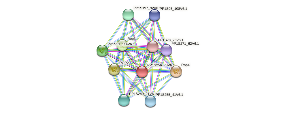 PP1S256_73V6.1 protein (Physcomitrella patens) - STRING interaction network