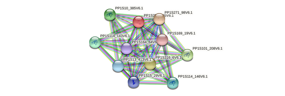 PP1S257_105V6.1 protein (Physcomitrella patens) - STRING interaction network