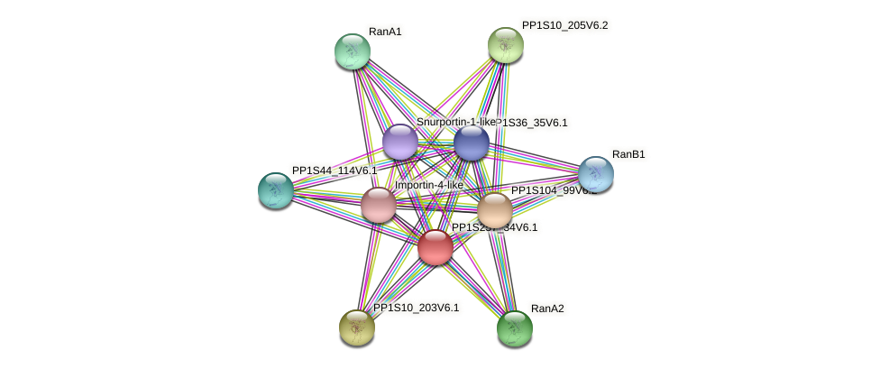 PP1S257_34V6.1 protein (Physcomitrella patens) - STRING interaction network