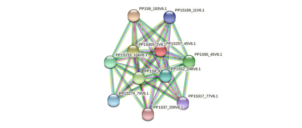 PP1S257_45V6.1 protein (Physcomitrella patens) - STRING interaction network