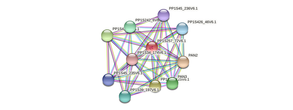 PP1S257_72V6.1 protein (Physcomitrella patens) - STRING interaction network