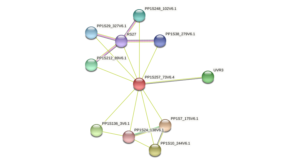 PP1S257_73V6.1 protein (Physcomitrella patens) - STRING interaction network