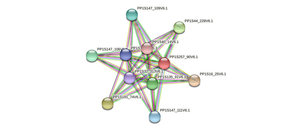 PP1S257_90V6.1 protein (Physcomitrella patens) - STRING interaction network