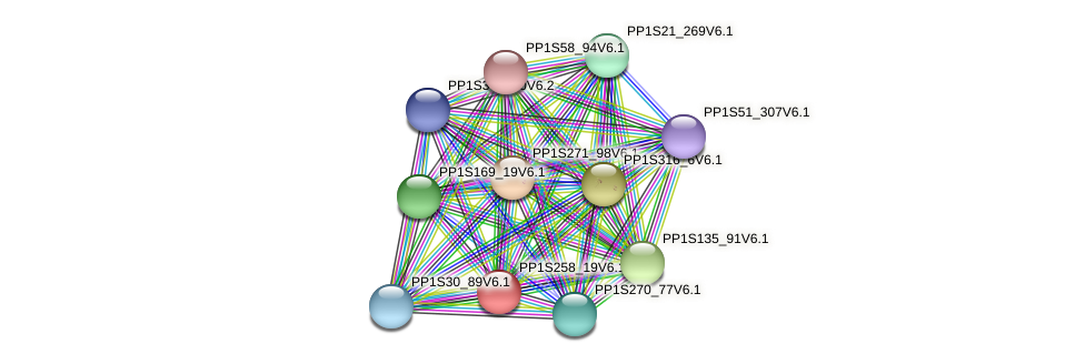 PP1S258_19V6.1 protein (Physcomitrella patens) - STRING interaction network