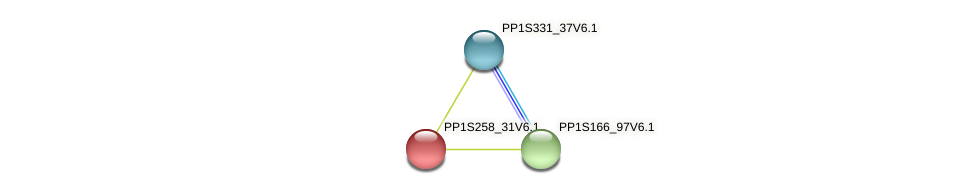 PP1S258_31V6.1 protein (Physcomitrella patens) - STRING interaction network
