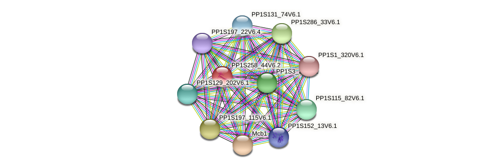 PP1S258_44V6.2 protein (Physcomitrella patens) - STRING interaction network