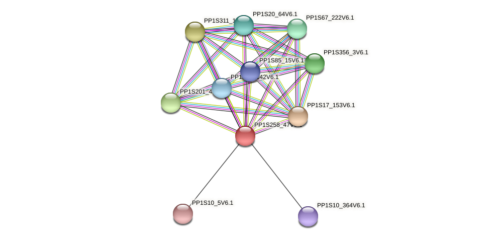 PP1S258_47V6.1 protein (Physcomitrella patens) - STRING interaction network