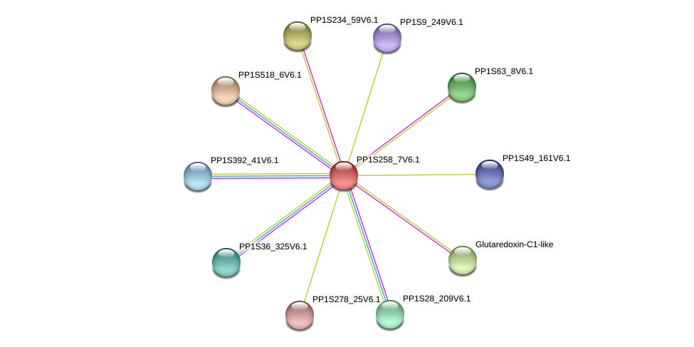 PP1S258_7V6.1 protein (Physcomitrella patens) - STRING interaction network