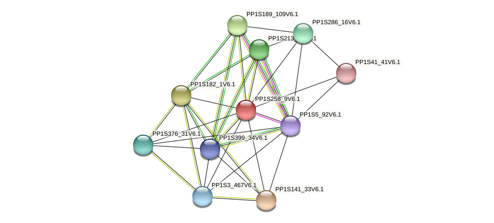 PP1S258_9V6.1 protein (Physcomitrella patens) - STRING interaction network