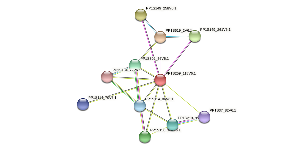 PP1S259_118V6.1 protein (Physcomitrella patens) - STRING interaction network