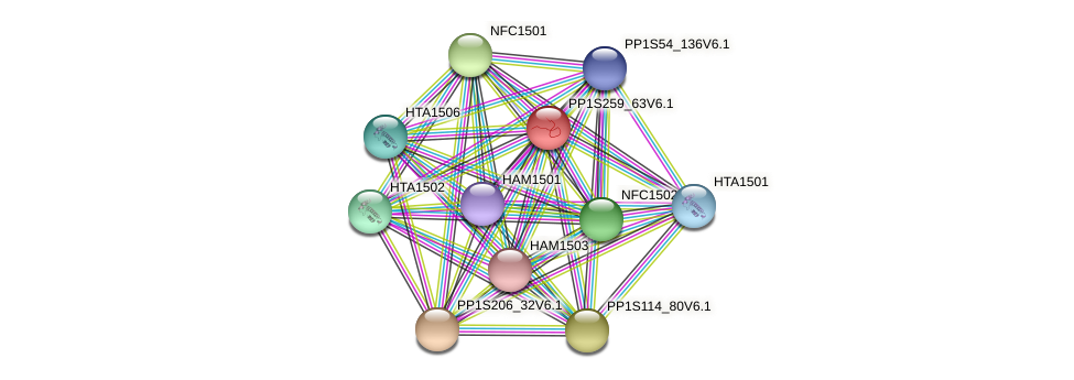 PP1S259_63V6.1 protein (Physcomitrella patens) - STRING interaction network
