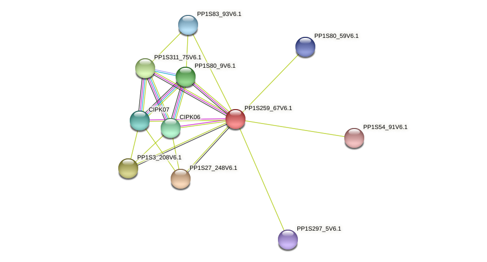 PP1S259_67V6.1 protein (Physcomitrella patens) - STRING interaction network