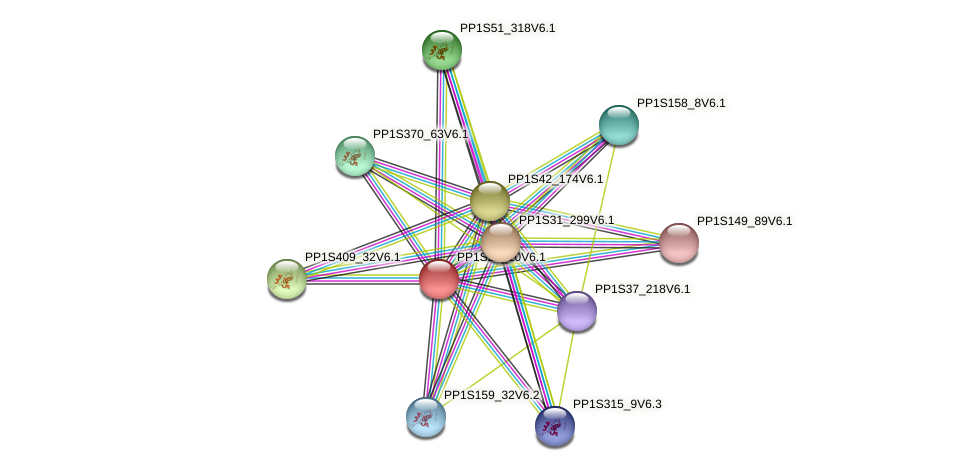 PP1S25_10V6.1 protein (Physcomitrella patens) - STRING interaction network