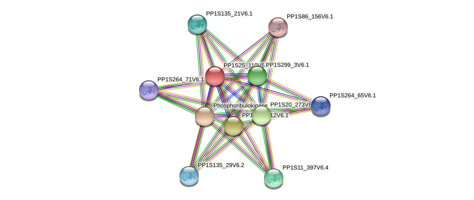 PP1S25_110V6.1 protein (Physcomitrella patens) - STRING interaction network