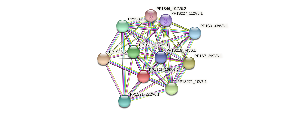 PP1S25_198V6.4 protein (Physcomitrella patens) - STRING interaction network