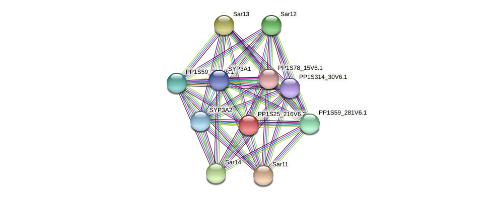 PP1S25_216V6.1 protein (Physcomitrella patens) - STRING interaction network