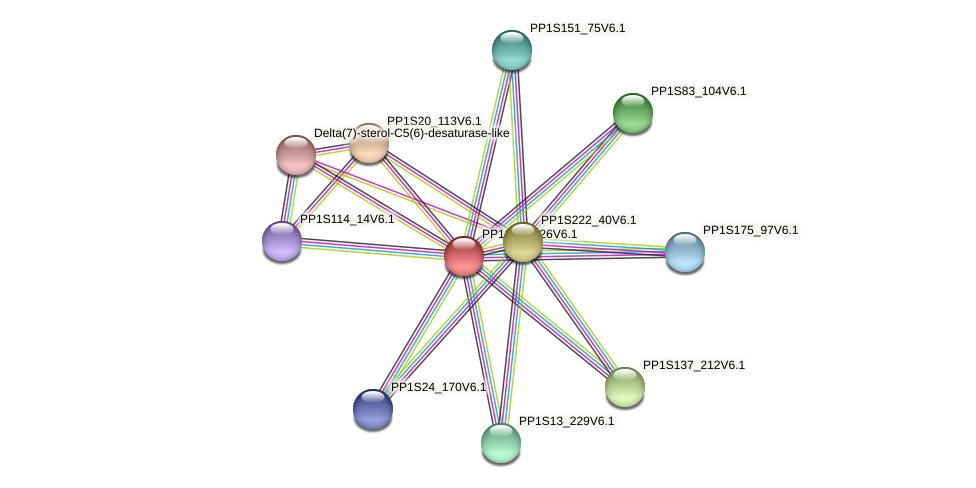 PP1S25_226V6.1 protein (Physcomitrella patens) - STRING interaction network