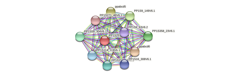 PP1S25_244V6.1 protein (Physcomitrella patens) - STRING interaction network