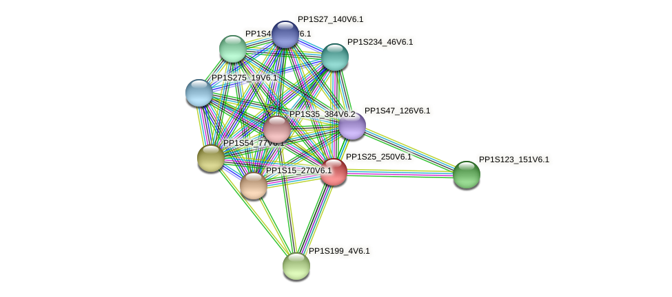 PP1S25_250V6.1 protein (Physcomitrella patens) - STRING interaction network