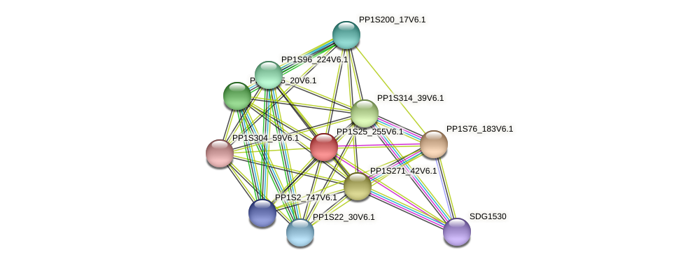 PP1S25_255V6.1 protein (Physcomitrella patens) - STRING interaction network