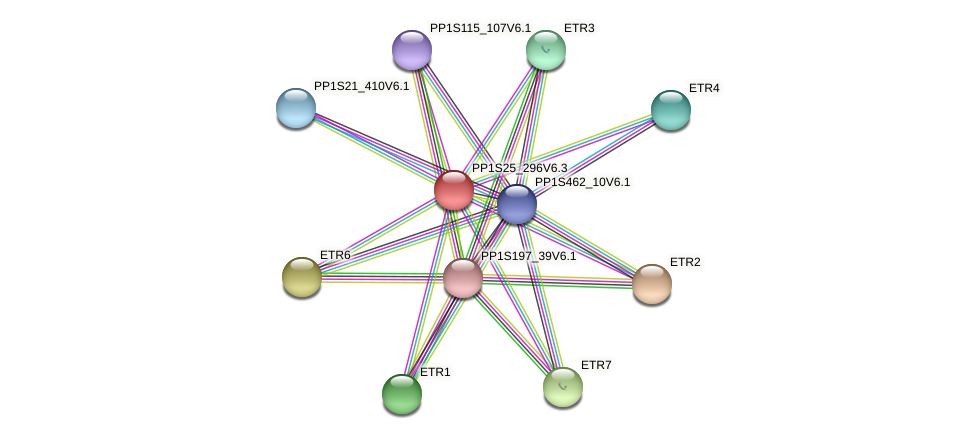 PP1S25_296V6.1 protein (Physcomitrella patens) - STRING interaction network