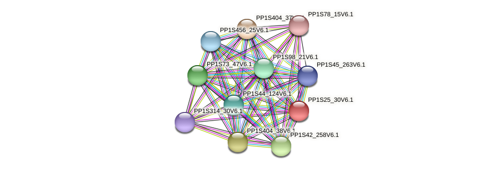 PP1S25_30V6.1 protein (Physcomitrella patens) - STRING interaction network