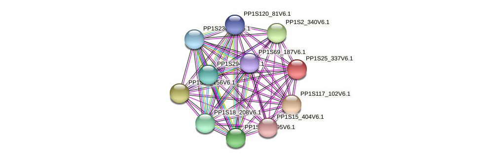 PP1S25_337V6.1 protein (Physcomitrella patens) - STRING interaction network