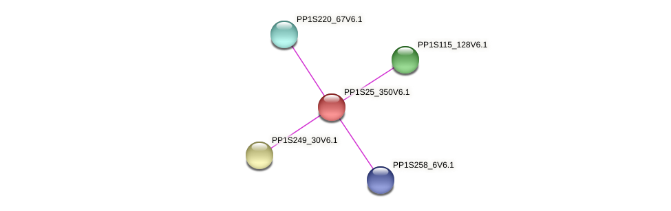 PP1S25_350V6.1 protein (Physcomitrella patens) - STRING interaction network