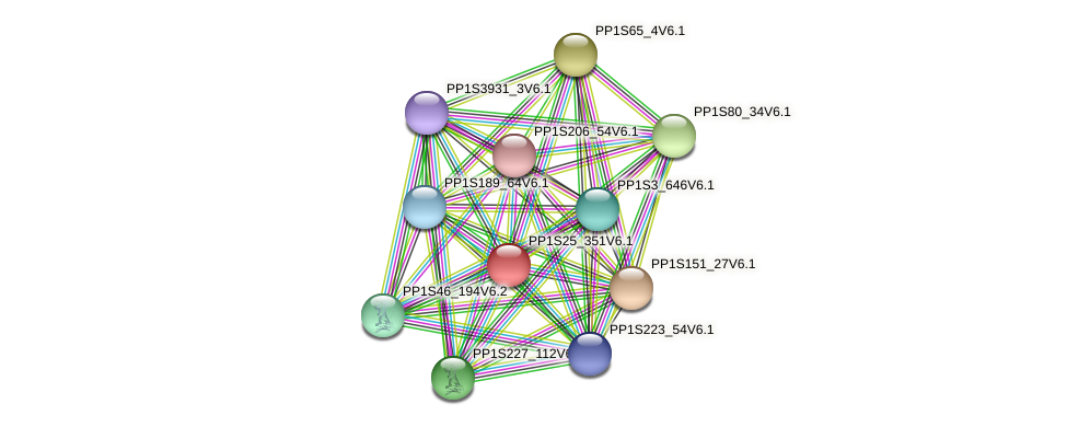 PP1S25_351V6.1 protein (Physcomitrella patens) - STRING interaction network