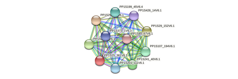 PP1S25_361V6.1 protein (Physcomitrella patens) - STRING interaction network