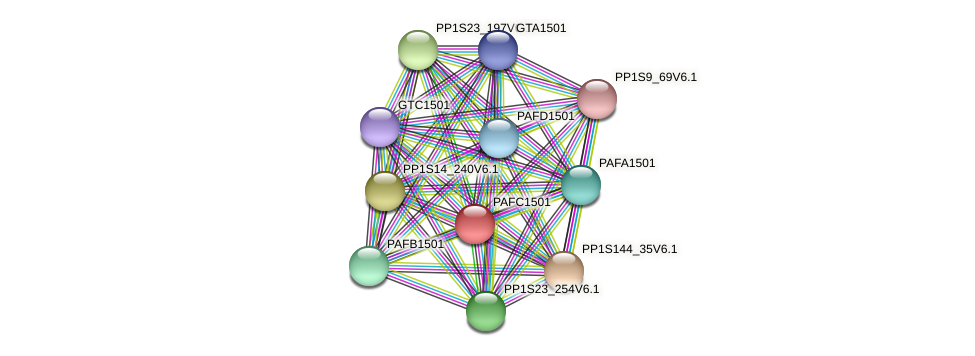 PAFC1501 protein (Physcomitrella patens) - STRING interaction network