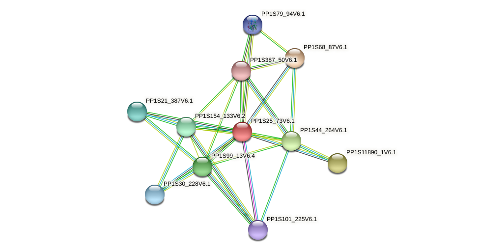 PP1S25_73V6.1 protein (Physcomitrella patens) - STRING interaction network