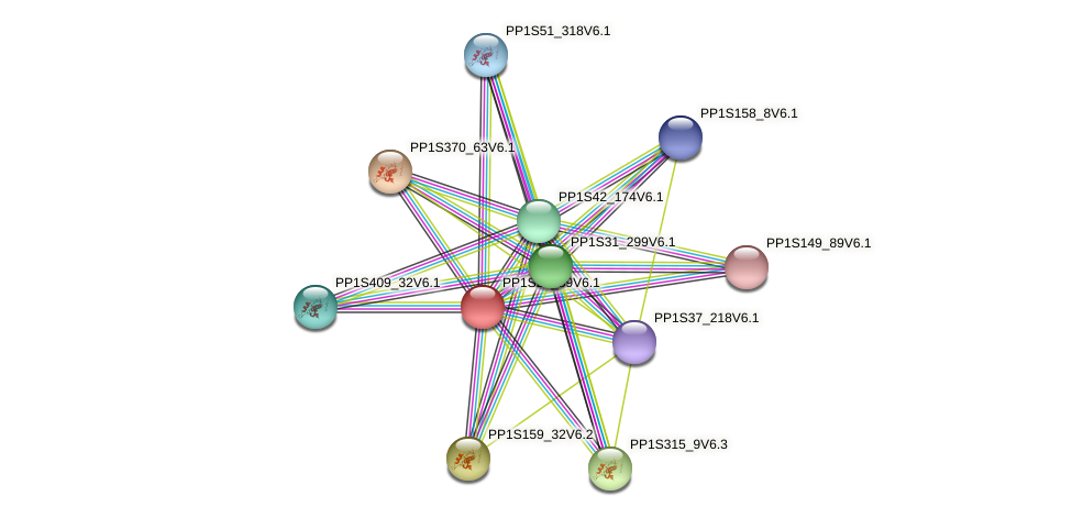 PP1S25_89V6.1 protein (Physcomitrella patens) - STRING interaction network