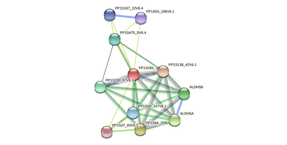 PP1S260_30V6.1 protein (Physcomitrella patens) - STRING interaction network