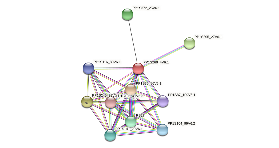 PP1S260_4V6.1 protein (Physcomitrella patens) - STRING interaction network