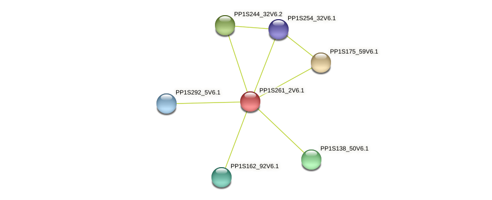 PP1S261_2V6.1 protein (Physcomitrella patens) - STRING interaction network