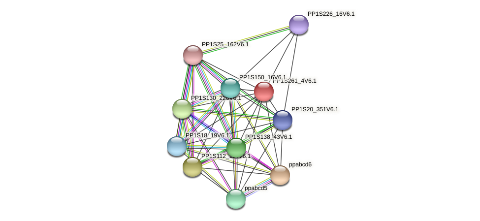 PP1S261_4V6.1 protein (Physcomitrella patens) - STRING interaction network