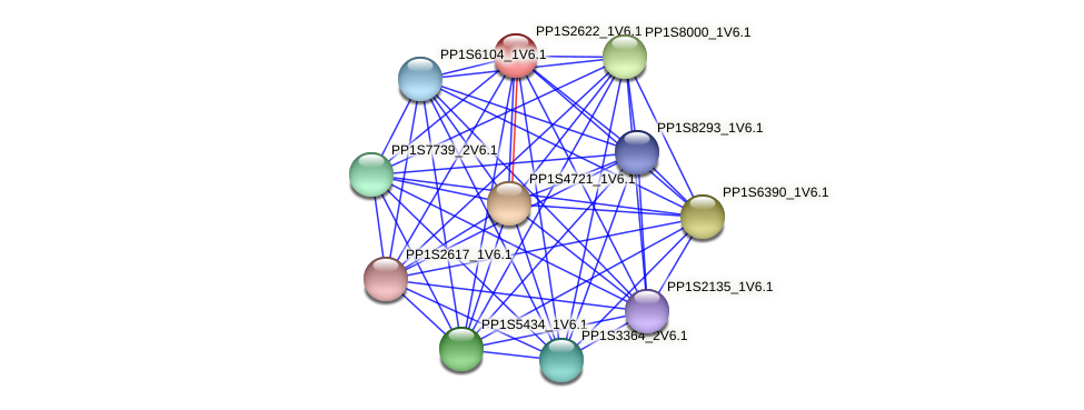 PP1S2622_1V6.1 protein (Physcomitrella patens) - STRING interaction network