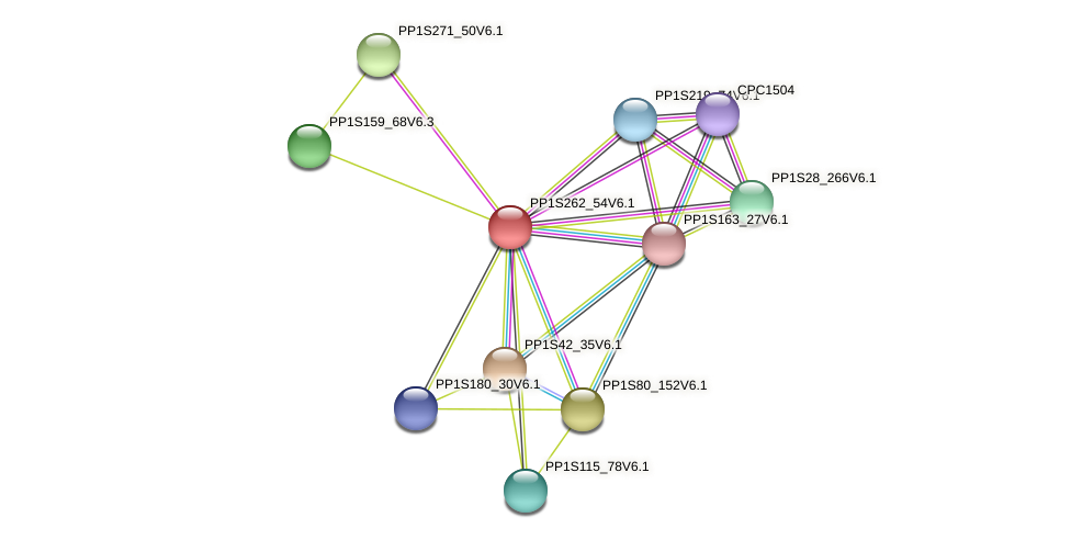 PP1S262_54V6.1 protein (Physcomitrella patens) - STRING interaction network