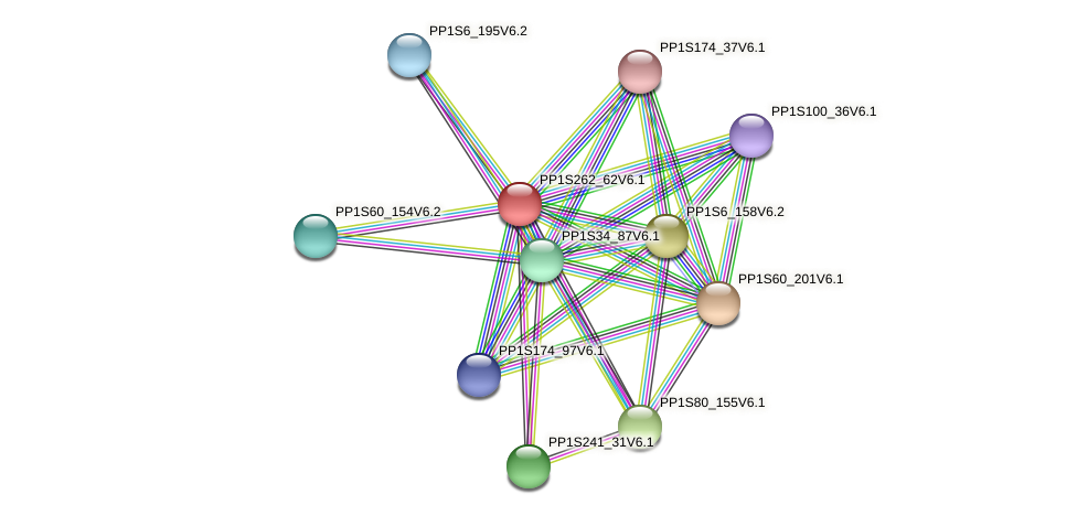 PP1S262_62V6.1 protein (Physcomitrella patens) - STRING interaction network