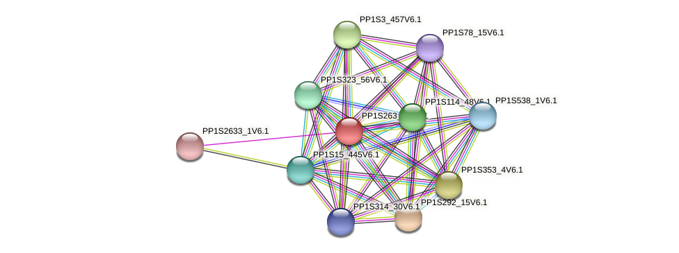 PP1S263_14V6.1 protein (Physcomitrella patens) - STRING interaction network