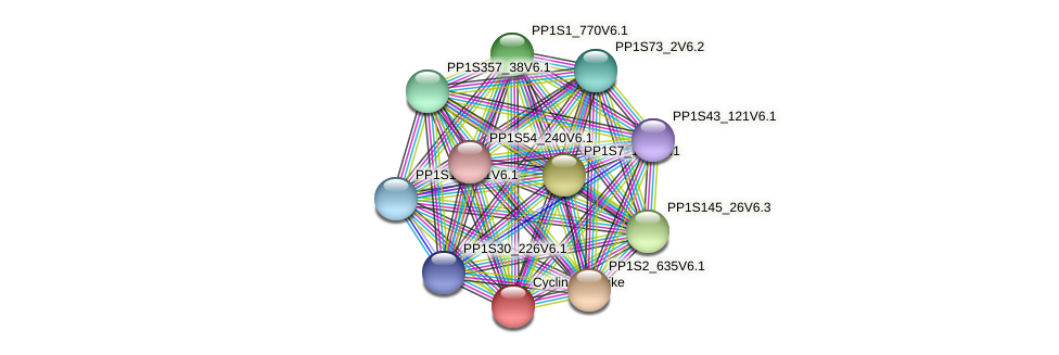 PP1S263_21V6.1 protein (Physcomitrella patens) - STRING interaction network