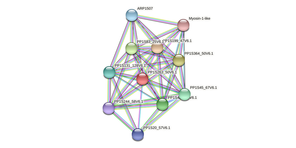 PP1S263_50V6.1 protein (Physcomitrella patens) - STRING interaction network