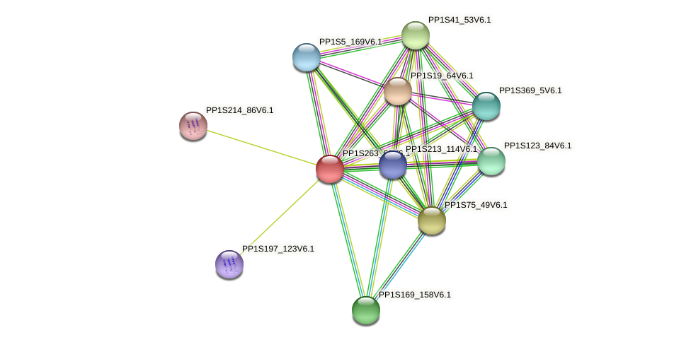 PP1S263_69V6.1 protein (Physcomitrella patens) - STRING interaction network
