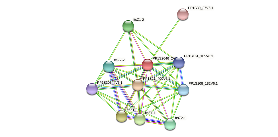 PP1S2646_2V6.1 protein (Physcomitrella patens) - STRING interaction network