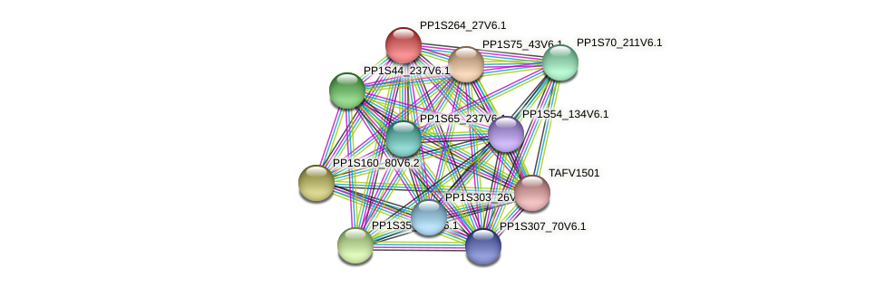 PP1S264_27V6.1 protein (Physcomitrella patens) - STRING interaction network