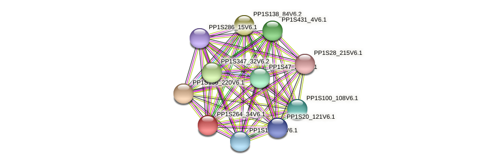 PP1S264_34V6.1 protein (Physcomitrella patens) - STRING interaction network
